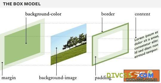 CSS元素中padding的解剖图
