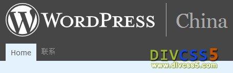 DIV CSS wordpress博客系统截图